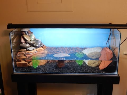 DIY 20 gallon long pond aquarium build with waterfall