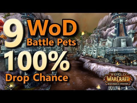 9 Warlords Of Draenor Battle Pets 100% Drop Chance