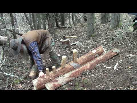 Primitive Splitting A Board Off A Log In The Woods.