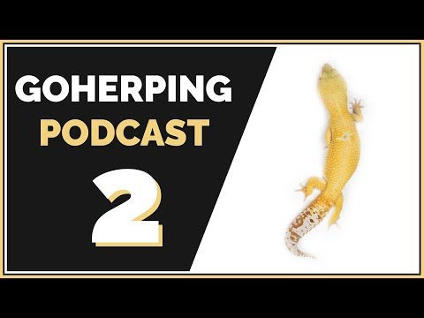Dumb Mistakes I made in the Reptile Room | GoHerping Podcast #2