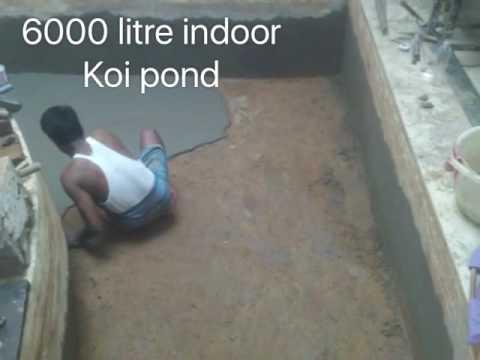 WEEKEND PROJECT. 6000 litres indoor Koi pond