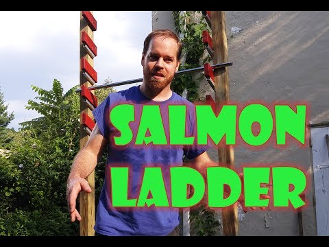 Homemade Salmon Ladder made cheaply