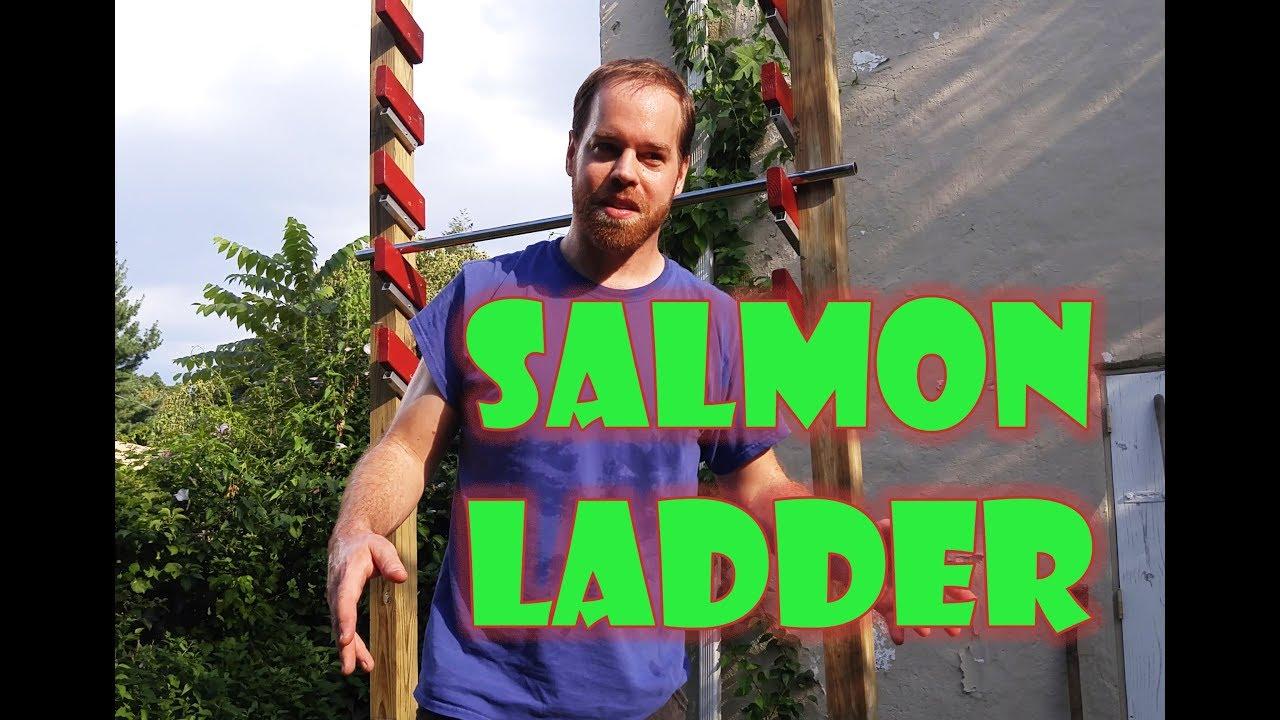 Homemade Salmon Ladder made cheaply