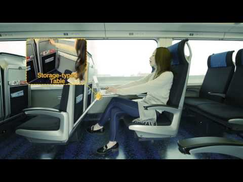 【Tokyo】Best Choice ever made★Skyliner from Narita Airport to Downtown Tokyo