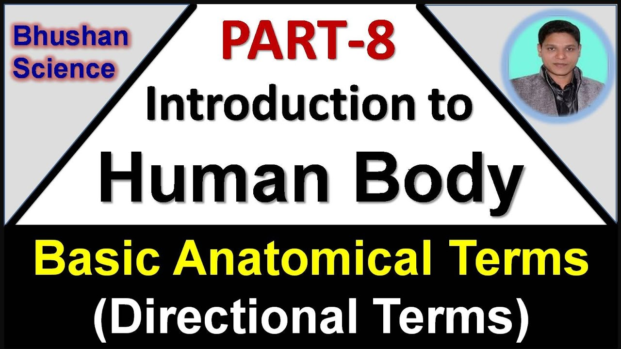 Part 8 : Intro to Human Body   Basic Anatomical Terms   Directional Terms   B. Pharm   Nursing