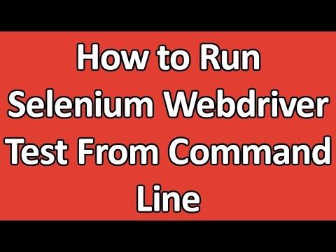 Run selenium script using batch file