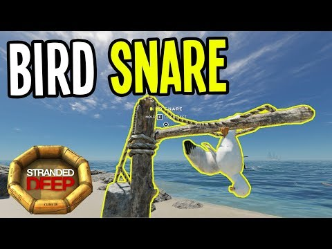 NEW BIRD SNARE and OCEAN CURRENTS - Stranded Deep Gameplay - Episode 13
