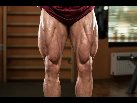BEST HOME LEG WORKOUT (BODYWEIGHT) - NO EQUIPMENT NEEDED