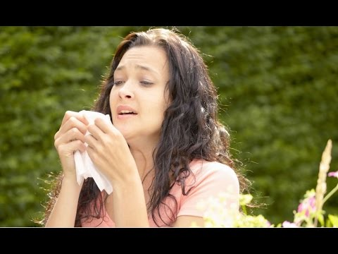 Home Remedies to Treat Hay Fever