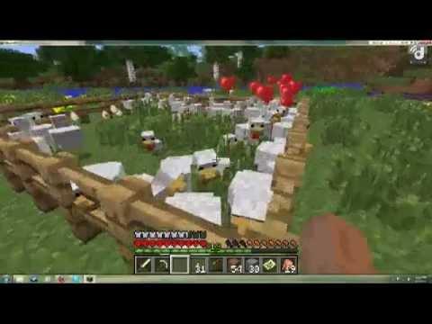 Minecraft - Feeding the Chickens