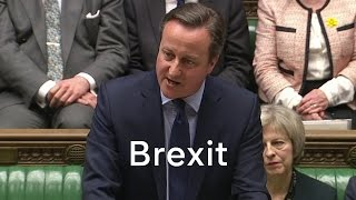 More than 100 Tory MPs back Brexit