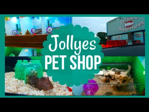 Visit To Jollyes Pet Shop (they got new animals!)