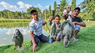 Pescamos Tilapias Con Anzuelo Y Masa Como Carnada