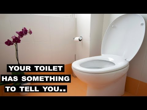 Something You Should Know About Your Toilet