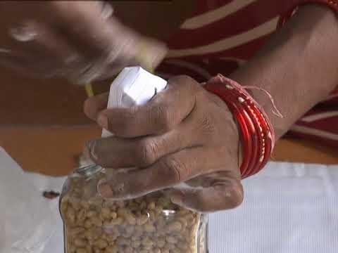 Mushroom Spawn production KVK Jharsuguda