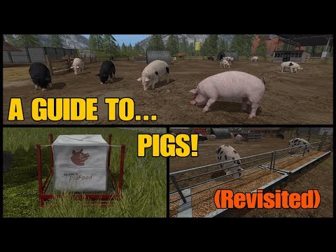 Farming Simulator 17 PS4: A Guide to... PIGS! (Revisited)