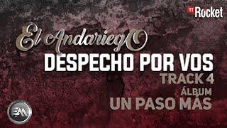 4. Despecho Por Vos - El Andariego - Con Letra [Musica Popular]