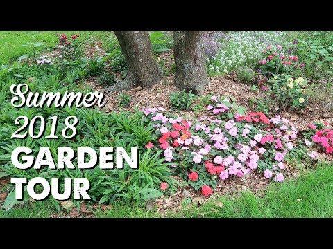 Garden Tour: Summer 2018 | A Thousand Words