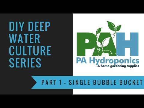 Watch this before you build a deep water culture (DWC) bubble bucket - PA Hydroponics