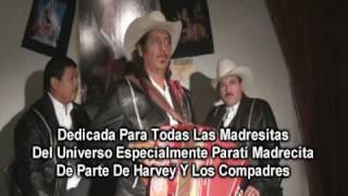 Harvey Y Los Compadres Madre Mia