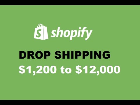 Shopify Dropshipping $1,500 to $12,000 with Facebook Ads