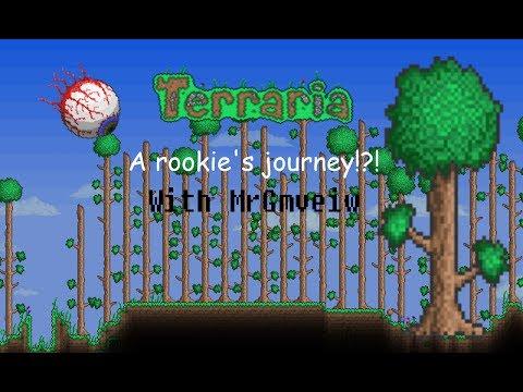 Let's Play Terraria 125 - Corruption Chest, Queen Bee & NPC Follies
