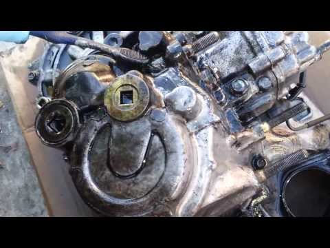 DIY How to Degrease/Clean your Engine - Winston Buzon
