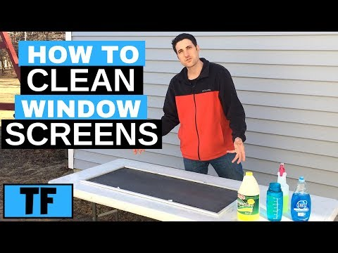 How To Clean Window Screens (Best Tips For Fast Washing)