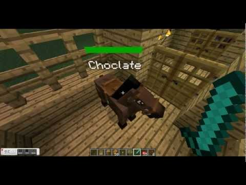 Minecraft Mo cretures tutorials how to get a tier 2 horse