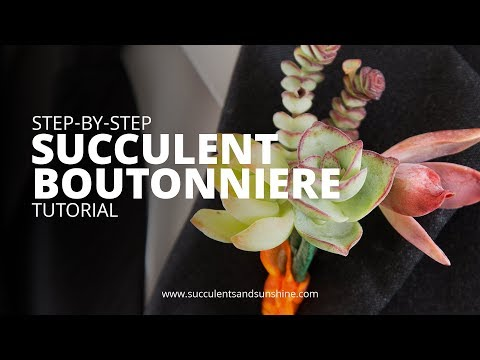 How to Make a Succulent Boutonniere
