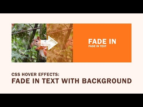 CSS Hover Effects | Fade in Text with Background