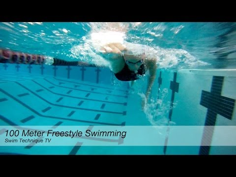 100 Meter Freestyle Swimming Technique