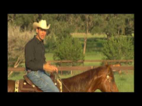 Reining Rundowns -  Look Up, Look Where You are Going