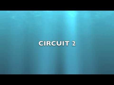 Electrical Circuit 2