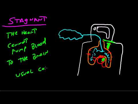 The Four Types Of Hypoxia