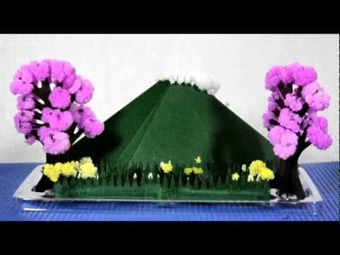 Magic Crystal Garden - Timelapse Video