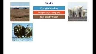 Earth S Climate The Polar Zone