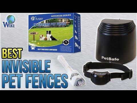 8 Best Invisible Pet Fences 2018