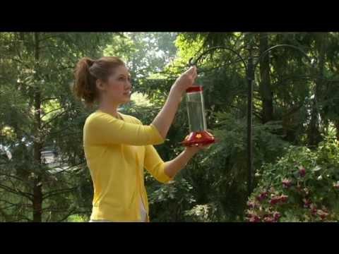 How to Clean a Perky-Pet® Hummingbird Feeder