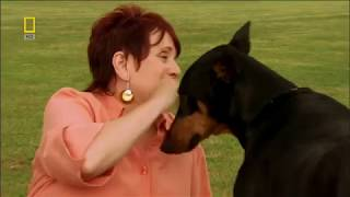 Donnie The Dog Genius (2007)