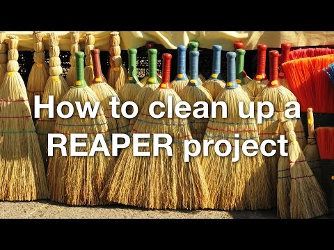 How to clean up a REAPER project