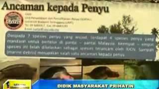 2010 Turtle Awareness Program UMT in Buletin Utama (22 Aug 2010)