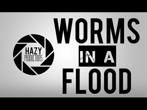 WORMS iN A FLOOD