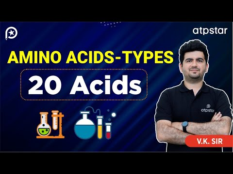 Amino acids ( Types and list ) -  IITJEE Concepts in Hindi