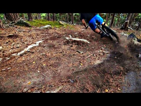destroying a berm for science