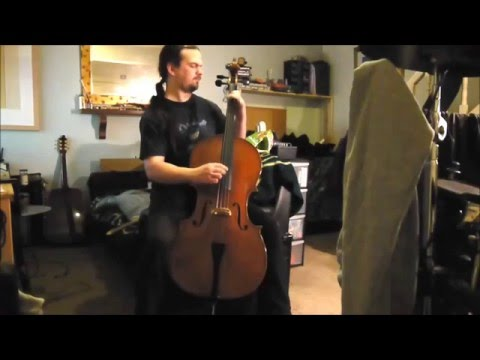 Eastman Strings - The Westbury - Cello For Sale (sold)