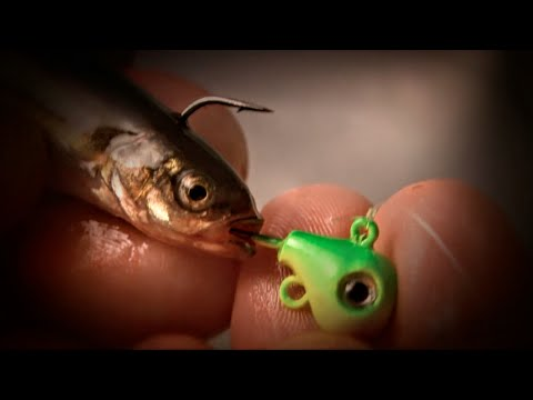 Jig & Minnow Fishing for Spring Walleyes