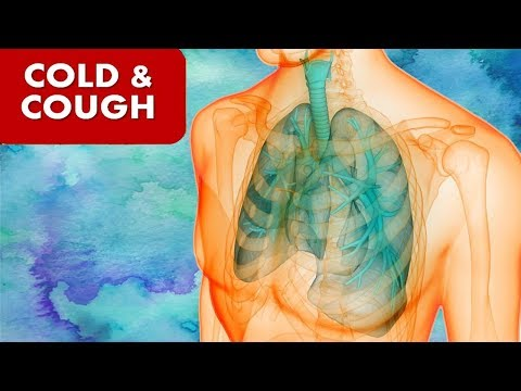 Cough and Cold -  Traditional Home Remedies | How to Get Rid of Cough, Cold & Flu Fast Overnight |