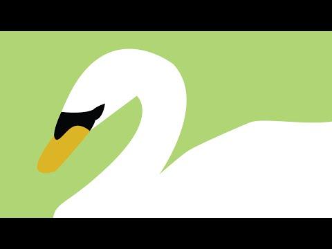Illustrator Tutorial - Tracing Over a Photo for Logo Design