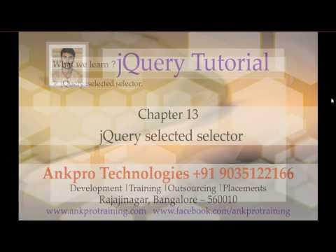 jQuery 13 - Selectors - Selected selector